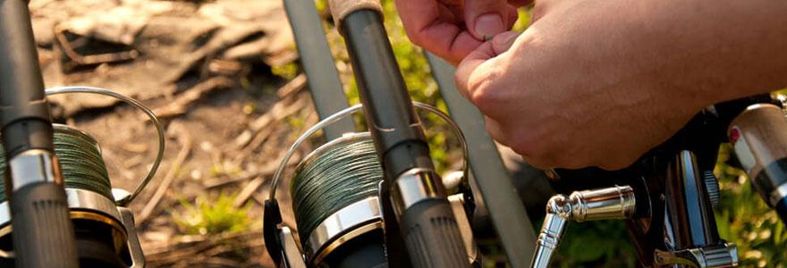 Choisir matériel pour la pêche à la carpe